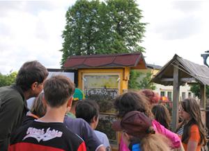 Bienenvolk zur Ansicht in der Regelschule in Langenwetzendorf
