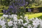 Garten im Frühling und Sommer
